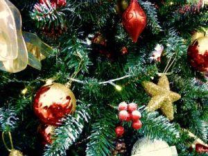 Karácsonyfa vásárlási ötletek