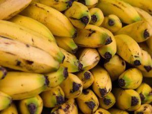 Mitől védjük meg kedvenc gyümölcsünket, a banánt?