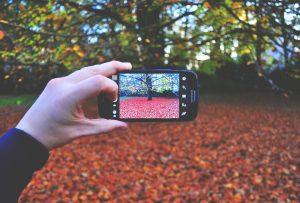 Telefon tokok: biztonság és stílus egyben